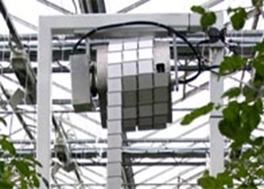 Cameras in the greehouse